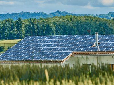 ¡Se ha anunciado un récord de ayudas del Estado para las plantas de energía solar en 2019!